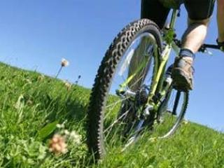 City Bike Tour