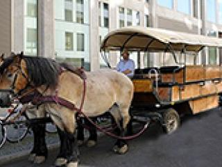 Beer Carriage