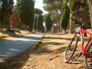 Biking and Wine Tasting